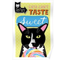 Cats can't taste sweet Poster