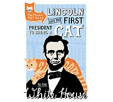 Lincoln was the first president to bring a cat to the white house. Photographic Print