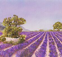 Drome Provence by Anastasiya Malakhova