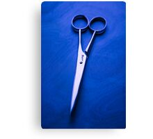 Nogent Scissors Canvas Print