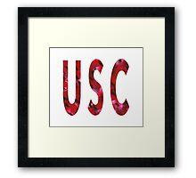 University of South Carolina Framed Print