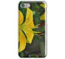 Lillies of the Field iPhone Case/Skin