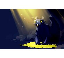 How to Train Your Dragon 07 Photographic Print