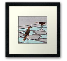Death Valley Birds Framed Print