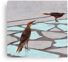 Death Valley Birds Canvas Print