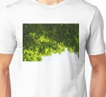 More Than Fifty Shades Of Green - Sunlit Chestnut Leaves Patterns - Down Unisex T-Shirt