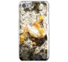 Helping Ants iPhone Case/Skin