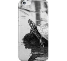 Painted Turtle Reflection iPhone Case/Skin