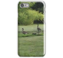 Perfect Bird Collection #2 Canadian Geese iPhone Case/Skin