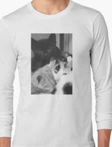 Pile of Kittens (Clothing Products) Long Sleeve T-Shirt