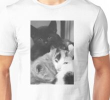 Pile of Kittens (Clothing Products) Unisex T-Shirt