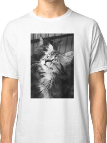 Kitten looking up (Clothing Products) Classic T-Shirt