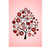 Red Ornaments Photographic Print