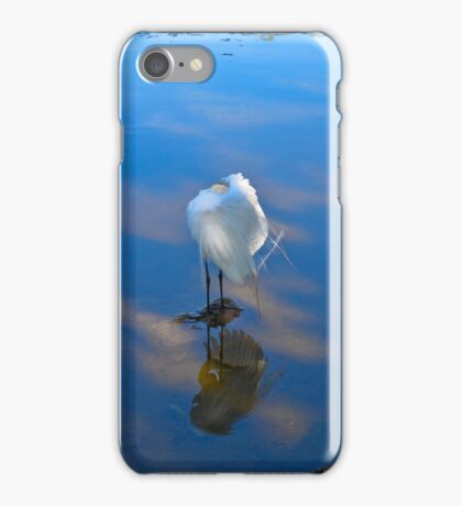 Reflections Blue Heron iPhone Case/Skin