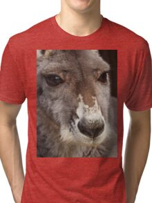Red Kangaroo Tri-blend T-Shirt