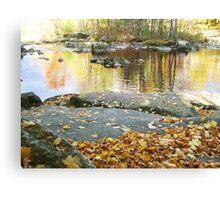#4 - Fall  Canvas Print