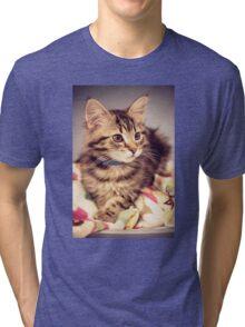 Tabby kitten in vintage colours Tri-blend T-Shirt