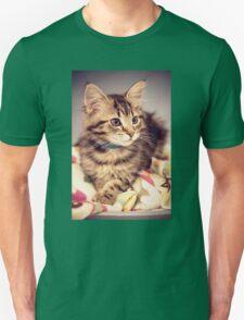 Tabby kitten in vintage colours Unisex T-Shirt