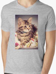 Tabby kitten in vintage colours Mens V-Neck T-Shirt