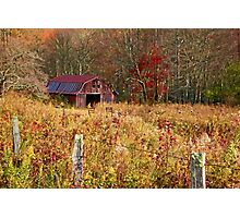 Barns - Country Life  Photographic Print