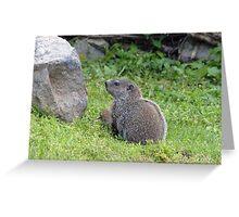 Woodie Greeting Card