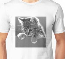 Kitten in a box (Clothing Products) Unisex T-Shirt
