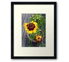 Gold and burgundy flower Framed Print