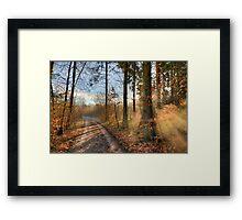 Morning Walk. Framed Print