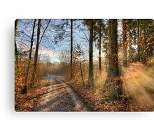 Morning Walk. Canvas Print