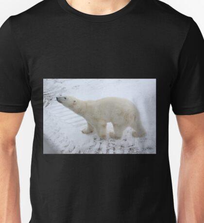 Inquisitive Polar Bear Unisex T-Shirt