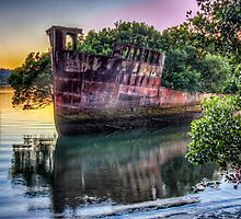 Homebush Shipwreck by Chris Brunton