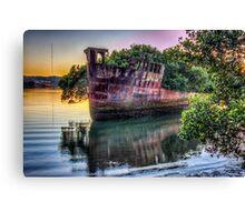 Homebush Shipwreck Canvas Print