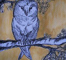 Barn Owl by Teresa White