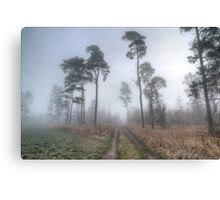 Forest Track in Mist. Canvas Print