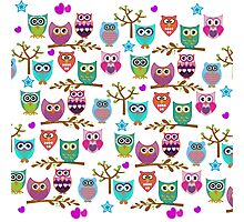 funky owls Photographic Print
