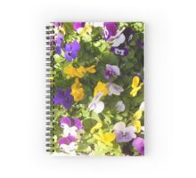 Pansies of Violet and Yellow Spiral Notebook
