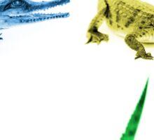 Four Coloured Crocodiles Sticker