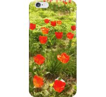 Fire-colored Tulips iPhone Case/Skin