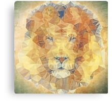 abstract lion Canvas Print