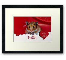 Animal Welfare Framed Print