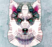 abstract husky by Ancello