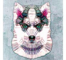 abstract husky Photographic Print