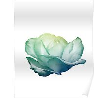 Gold and Teal Rose Poster