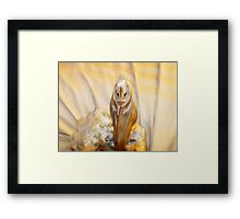 who do Framed Print
