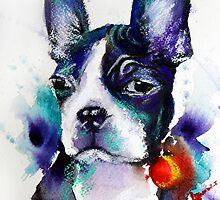 Boston Terrier by Jenny Barnes