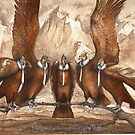 The Condor Formation Flying Team by Nestor