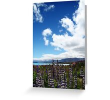 Lakeside Lupins Greeting Card