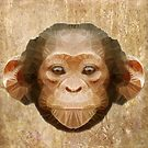 abstract baby chimpanzee by Ancello