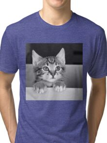 Kitten in a box 2 (Clothing Products) Tri-blend T-Shirt