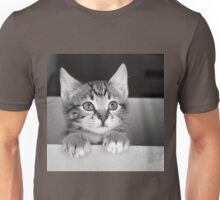 Kitten in a box 2 (Clothing Products) Unisex T-Shirt